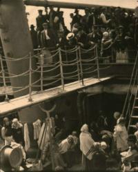 Steiglitz, The Steerage, SUAC
